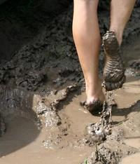 MuddyAlex