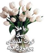100 تأشيرة عمل للملكة العربية السعودية .. 44642