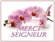 MerciSeigneur