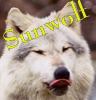 Sunwolf007