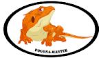 pogona-master