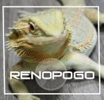 Renopogo