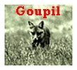 mr.Goupil