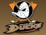 D.G Ducks (Fortin)