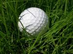 golf_nut