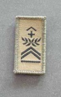 Swiss Sergeant