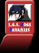 L.G.S Rogé Cavaillès