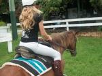 Brumby Rider