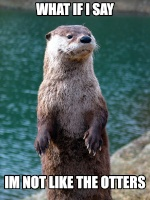 Louloutre