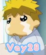 vay28