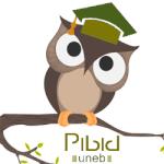 pibid2012