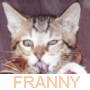fannie1110