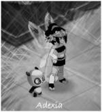 Adexia