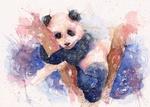 PandaBleu