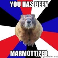 marmotplay