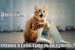 tolstova2984