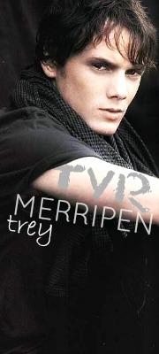 Tyr Merripen