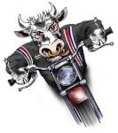 Cow-Biker