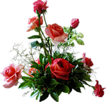 V E N E R A (морок красоты и очарования) - Страница 3 3904483907