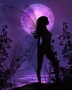 papillonscrap