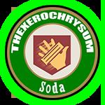 thexerochrysum