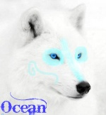 OceanLotW