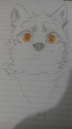 lion wolf hinoko