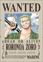 zoro.theKing