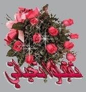 فارس عياد سورة البقرة 726891177