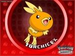 TorchicEX