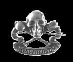 Sturmtruppe