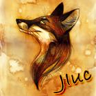 bc.team | JIuc