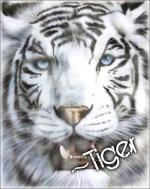 ~Tiger
