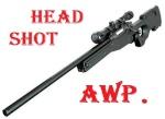 `AwP. Head Shot
