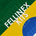 thefellinex