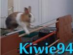 Kiwie94