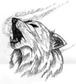 Darkwolf0955