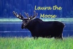Laura the Moose