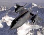 blackbird73