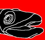 kongrionegro