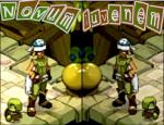 Novum-Iuvenem