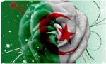 زهــرة الجــزائر