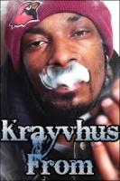 Krayvhus_From