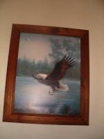 eagleluver
