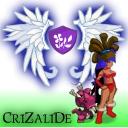 Crizalide