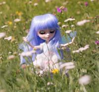 Kymiko.dolls