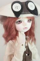 Rosen Dollzone