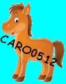 caro0512