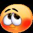 CHADOW - ONC Poney né en 2012 - adopté en septembre 2013 par Charlotte 3823960379