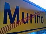 Murino